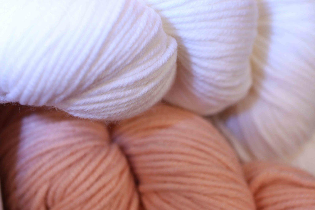 Paradise Mystery Yarn Grab Bag  - 6