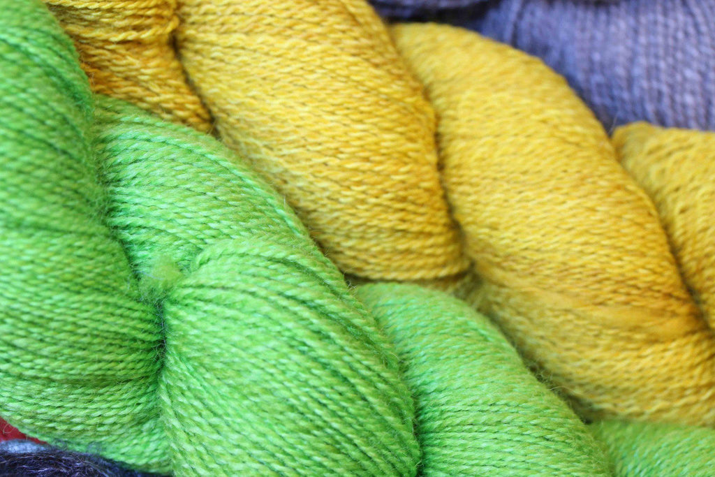 Paradise Mystery Yarn Grab Bag  - 9