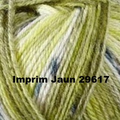 Bergere de France Goomy 50 Yarn Imprim Jaun 29617 - 10