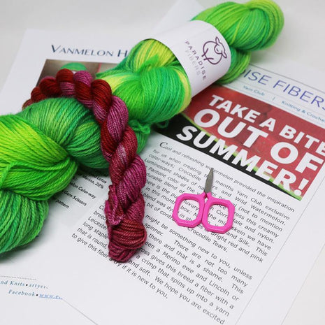 Yarn of the Month Club-Subscription-Paradise Fibers-Contiguous US-Paradise Fibers