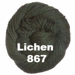 Cascade 128 Superwash Yarn Lichen 867 - 68