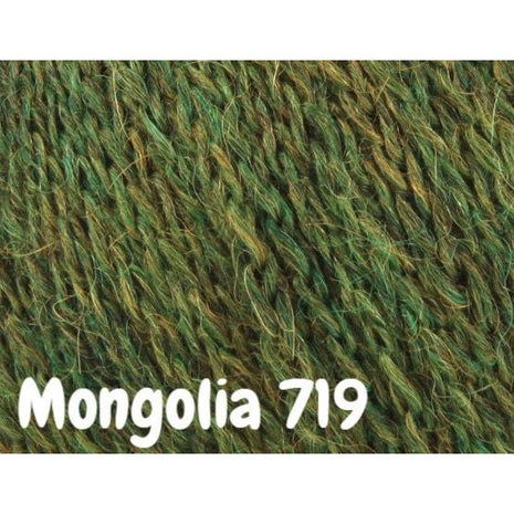 Rowan Lima Colour Yarn Mongolia 719 - 4
