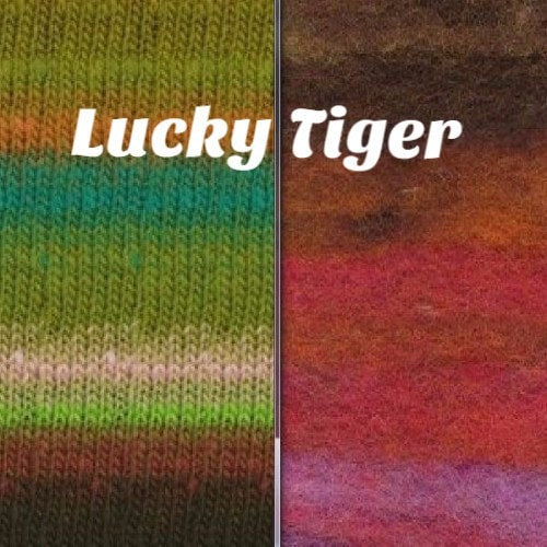Noro Rainbow Roll Scarf Kit Lucky Tiger - 3