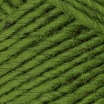 Brown Sheep Lambs Pride Worsted Yarn-Yarn-Kiwi M191-