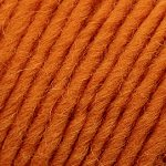 Brown Sheep Lambs Pride Worsted Yarn-Yarn-Autumn Harvest M22-
