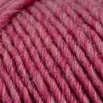 Brown Sheep Lambs Pride Worsted Yarn-Yarn-Antique Mauve M85-