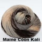 Paradise Fibers Yarn Ancient Arts DK Yarn - Meow Collection Maine Coon Kali - 15