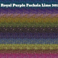 Paradise Fibers Yarn Noro Silk Garden Yarn Royal Purple Fuchsia Lime 301 - 9