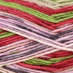 Paradise Fibers Universal Yarn Pix - Cake Party