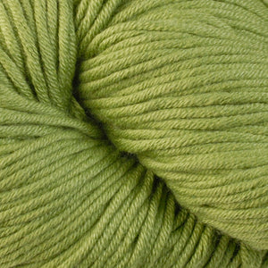 Elms 1659, a kiwi green skein of Berroco's worsted weight Modern Cotton.