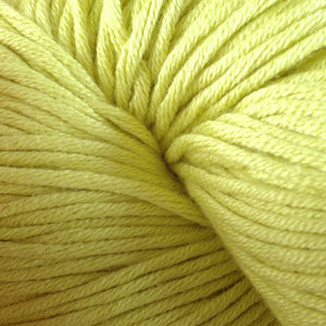 Mackeral 1626, a bright light green skein of Berroco's worsted weight Modern Cotton.