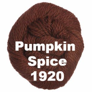 Cascade 128 Superwash Yarn Pumpkin Spice 1920 - 39