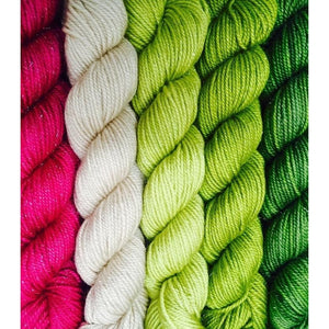 Sweet Georgia Yarns *LIMITED EDITION* Party of Five Mini-Skein Sets-Yarn-CashLuxe Spark-Snapdragon-