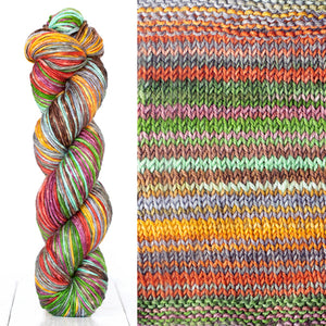 Color 4013: a hand-dyed skein of self striping wool yarn with green, red, yellow, and purple shades
