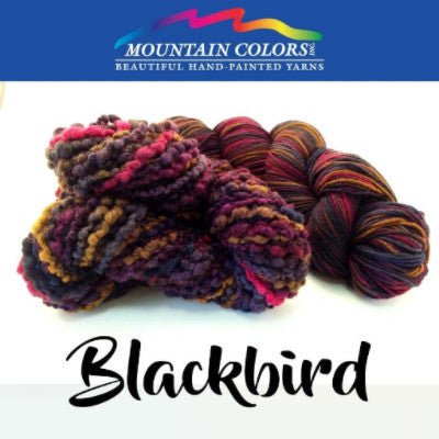 Mountain Colors Twizzlefoot Yarn Blackbird - 9