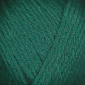 Paradise Fibers Lamb's Pride Superwash Worsted Holly Green
