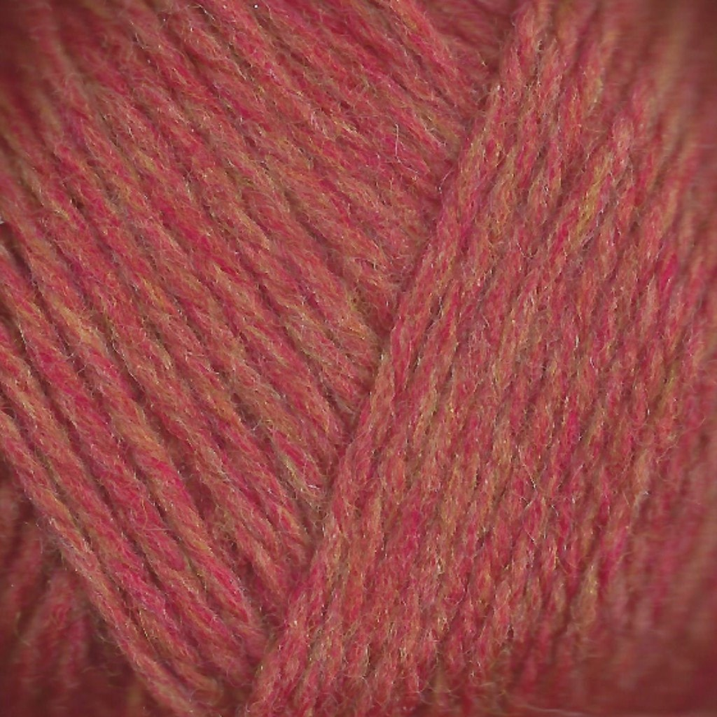 Paradise Fibers Lamb's Pride Superwash Worsted Cinnamon Twist