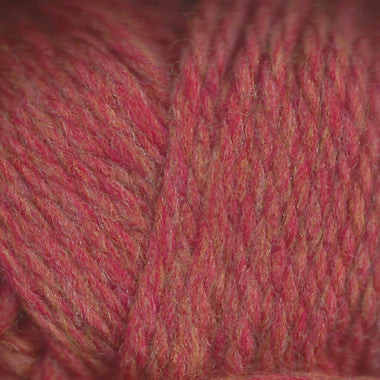 Paradise Fibers Lamb's Pride Superwash Bulky Cinnamon Twist