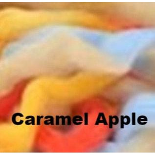 Louet Northern Lights Space Dyed Wool Tops (1/2 lb bags) Caramel Apple - 25
