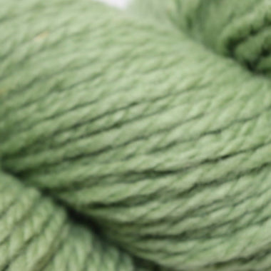 Paradise Fibers Cestari 2-Ply - Willow