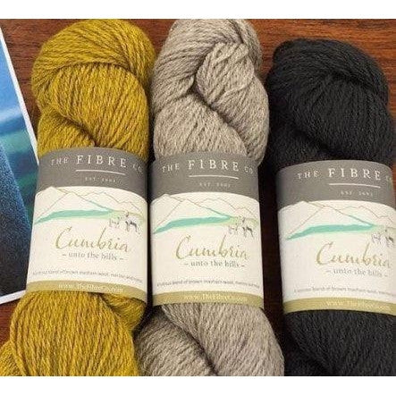 The Fibre Co. Cumbria Worsted Yarn  - 1