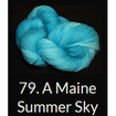 Done Roving DK Frolicking Feet Yarn A Maine Summer Sky 79 - 18