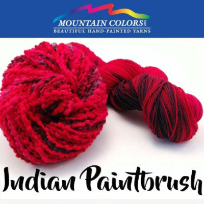 Mountain Colors Twizzlefoot Yarn Indian Paintbrush - 47
