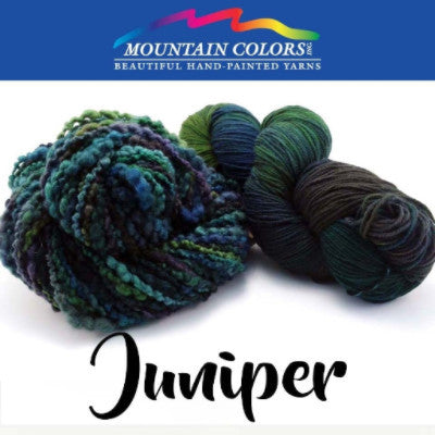 Mountain Colors Twizzlefoot Yarn Juniper - 49