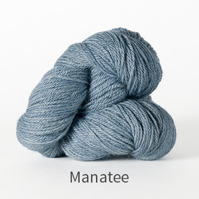 Paradise Fibers Yarn The Fibre Co. Canopy Fingering Yarn Manatee - 22