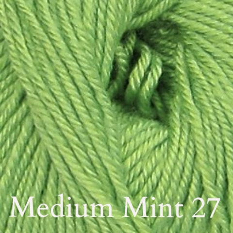 Ella Rae Cozy Soft Solids Yarn Medium Mint 27 - 19