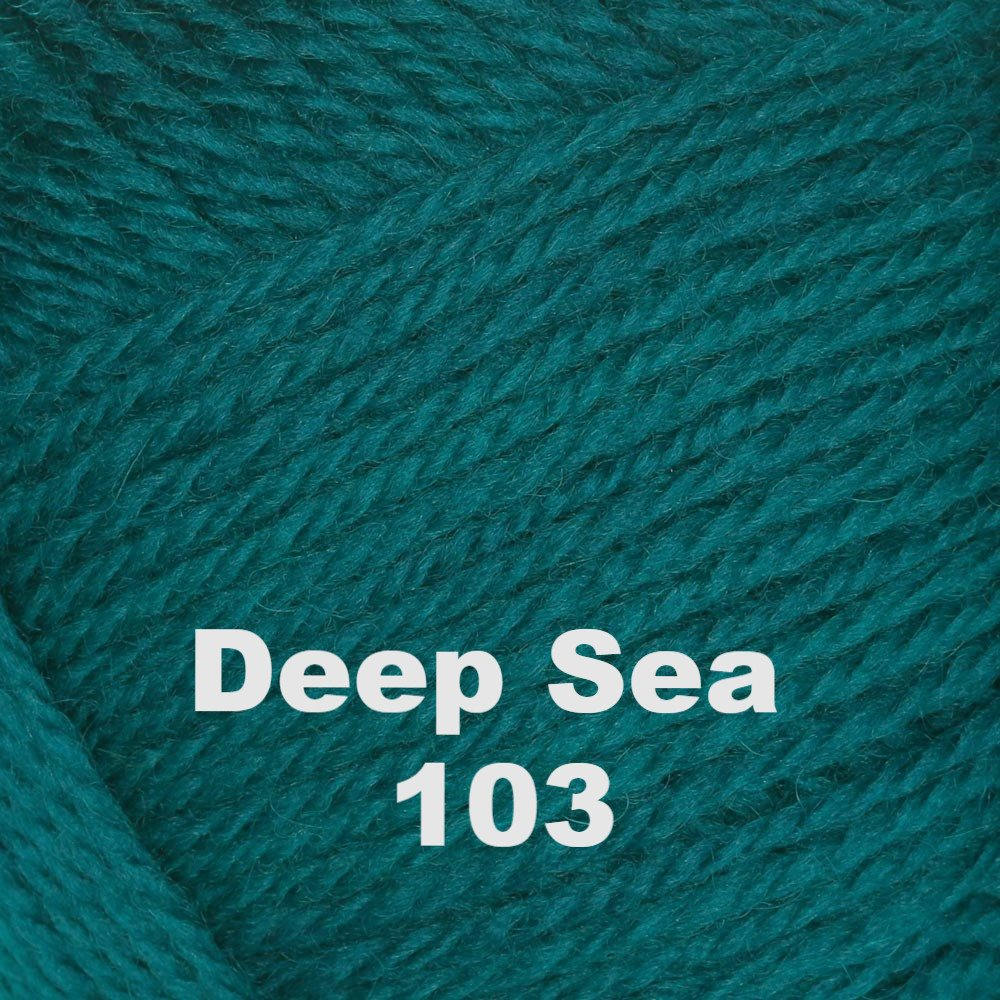 Brown Sheep Nature Spun Worsted Yarn Deep Sea 103 - 2