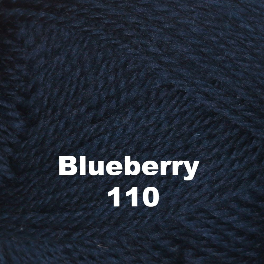 Brown Sheep Nature Spun Worsted Yarn Blueberry 110 - 7