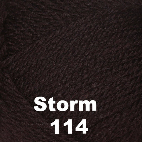 Brown Sheep Nature Spun Cone Fingering Yarn Storm 114 - 10