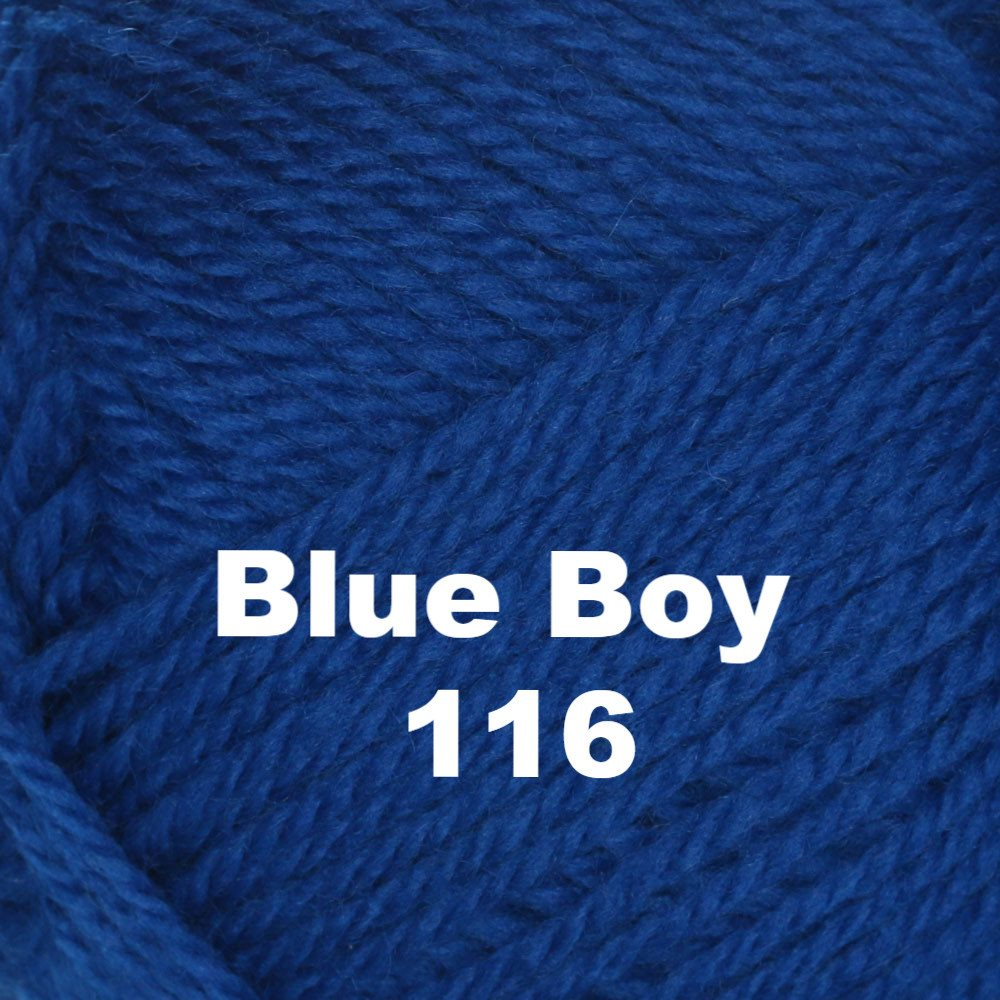 Brown Sheep Nature Spun Worsted Yarn Blue Boy 116 - 11