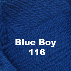 Brown Sheep Nature Spun Worsted Yarn-Yarn-Blue Boy 116-