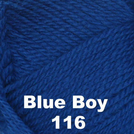 Brown Sheep Nature Spun Cone Fingering Yarn Blue Boy 116 - 12