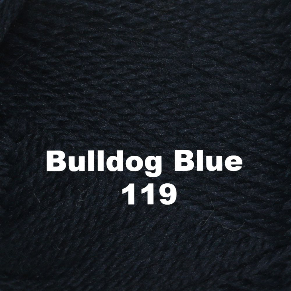Brown Sheep Nature Spun Worsted Yarn Bulldog Blue 119 - 13