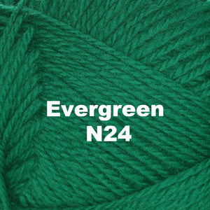 Brown Sheep Nature Spun Worsted Yarn-Yarn-Evergreen N24-
