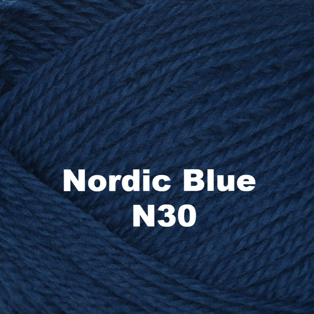 Brown Sheep Nature Spun Worsted Yarn Nordic Blue N30 - 55