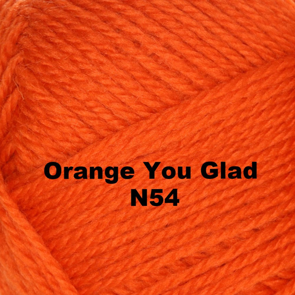Brown Sheep Nature Spun Worsted Yarn Orange You Glad N54 - 63