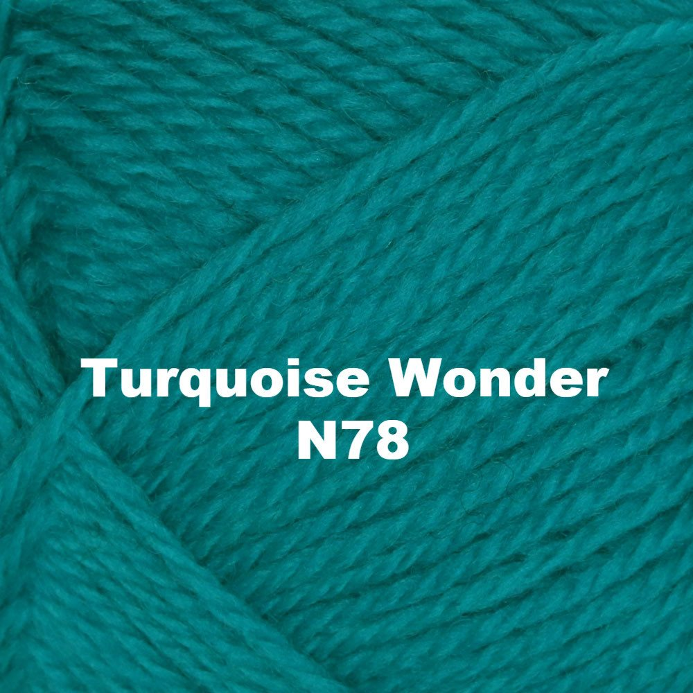 Brown Sheep Nature Spun Worsted Yarn Turquoise Wonder N78 - 69