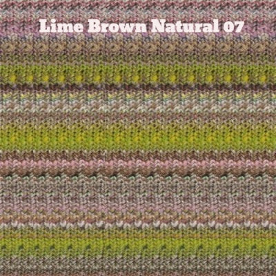 Noro Kibou Yarn Lime Brown Natural 07 - 5