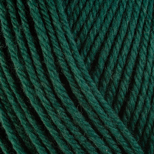 Arbor 3340, a dark forest green skein of washable worsted weight Ultra Wool yarn.