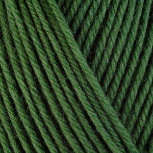 Basil 3343, a bright herb green skein of washable worsted weight Ultra Wool yarn.