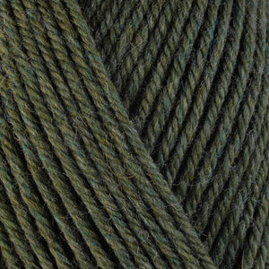 Marjoram 33118, a heathered herby green skein of washable worsted weight Ultra Wool yarn.