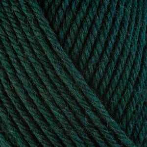 Pine 33149, a dark green skein of washable worsted weight Ultra Wool yarn.