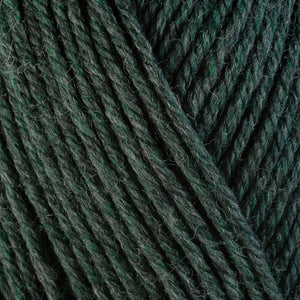Rosemary 33158, a dark heathered grey-green skein of washable worsted weight Ultra Wool yarn.