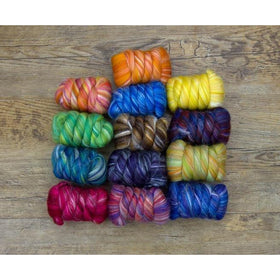 Paradise Fibers Constellation Range - Multi Color Merino/Silk Combed Top-Fiber-Paradise Fibers-Aquarius-4oz-Paradise Fibers