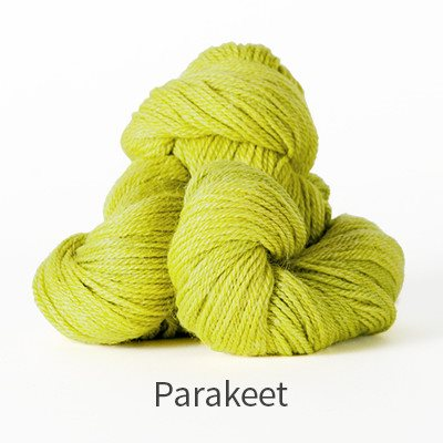 Paradise Fibers Yarn The Fibre Co. Canopy Fingering Yarn Parakeet - 27