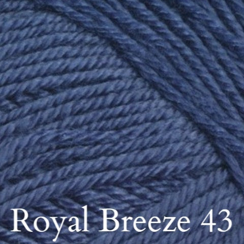 Ella Rae Cozy Soft Solids Yarn Royal Breeze 43 - 35